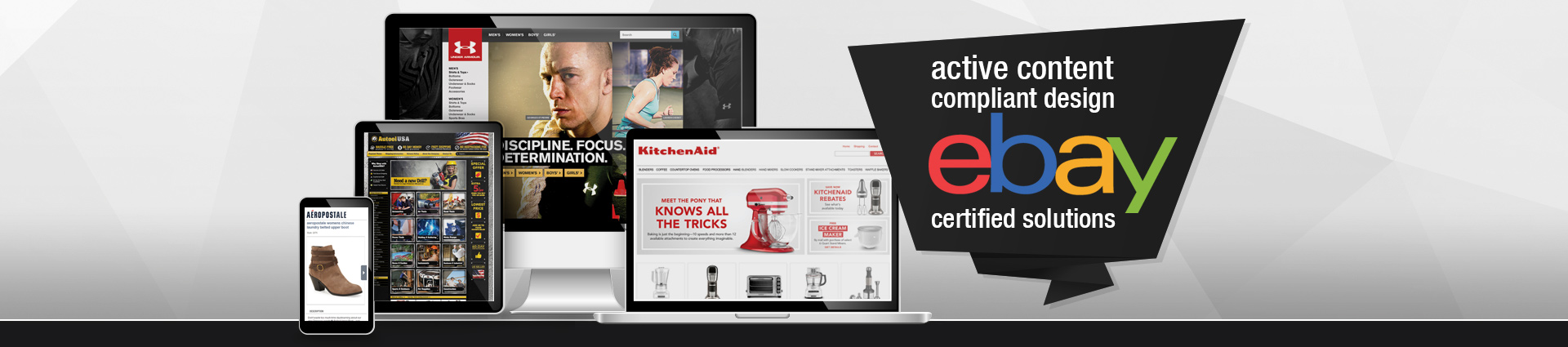 Active Content compliant design, eBay certified solutions