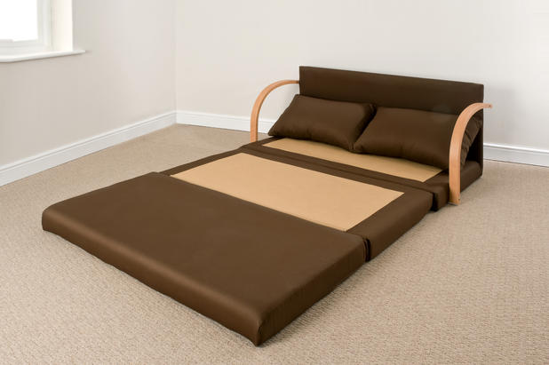 Fold Out Foam Bed
