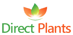 Direct Plants Logo