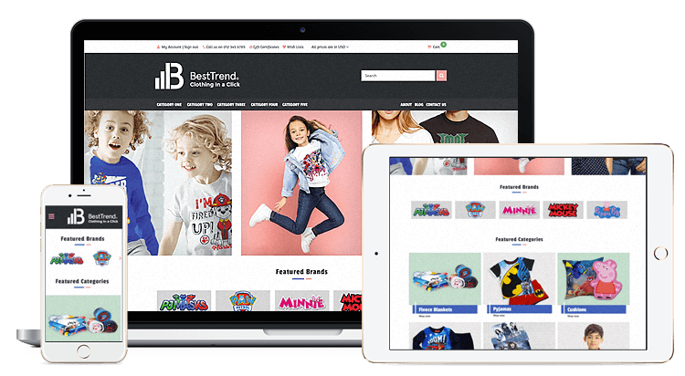 Professional ecommerce website design