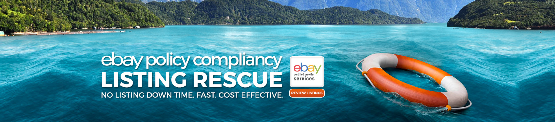 eBay Policy Compliancy Listing Rescue: No Listing Downtime. Fast. Cost Effective