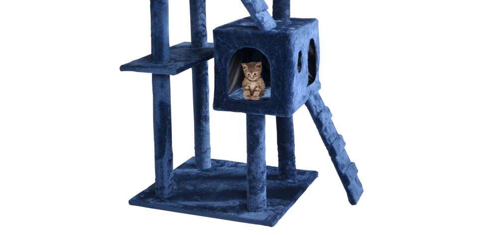 deterring cats from urinating on furniture