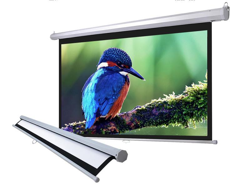 Manual Pull Down Projector Projection Screen Home Theater